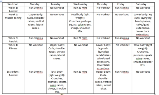 WorkoutSchedule